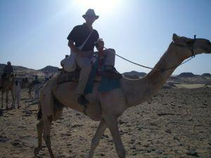 Racing camel